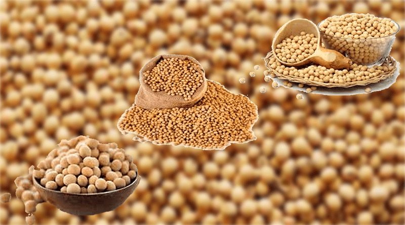 Benefits of soybeans