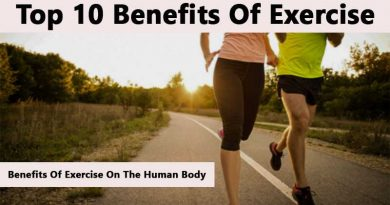Benefits Of Exercise On The Human Body