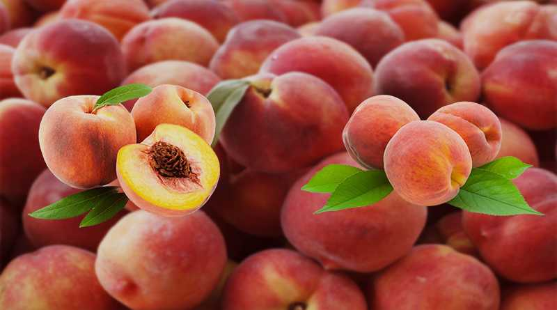 Top 12 Health Benefits Of Peach